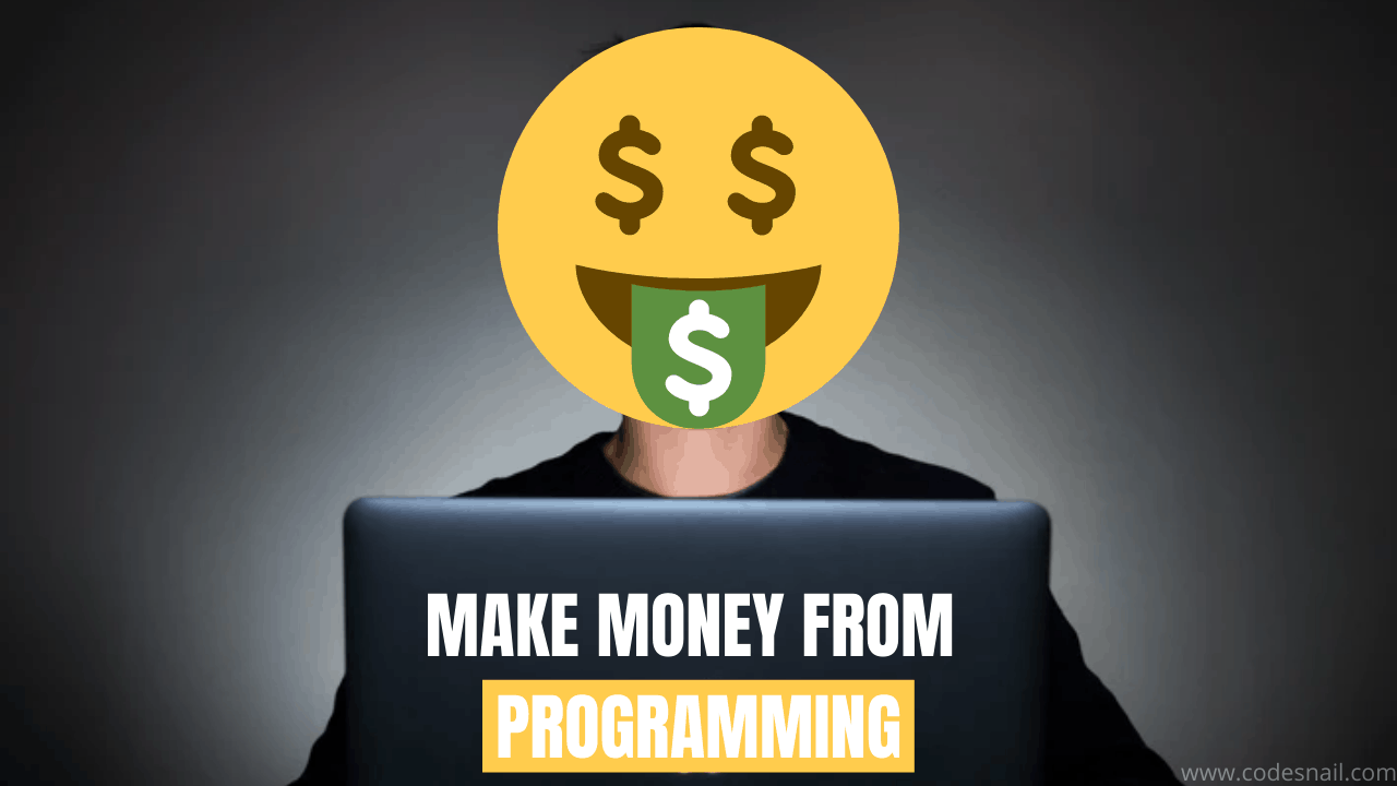 how to make money from programming
